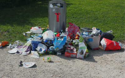The Importance Of Proper Waste Disposal | NW Arkansas